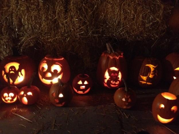 pumpkin-624x468