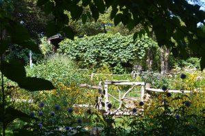Gate in Long Hill garden - Beverly