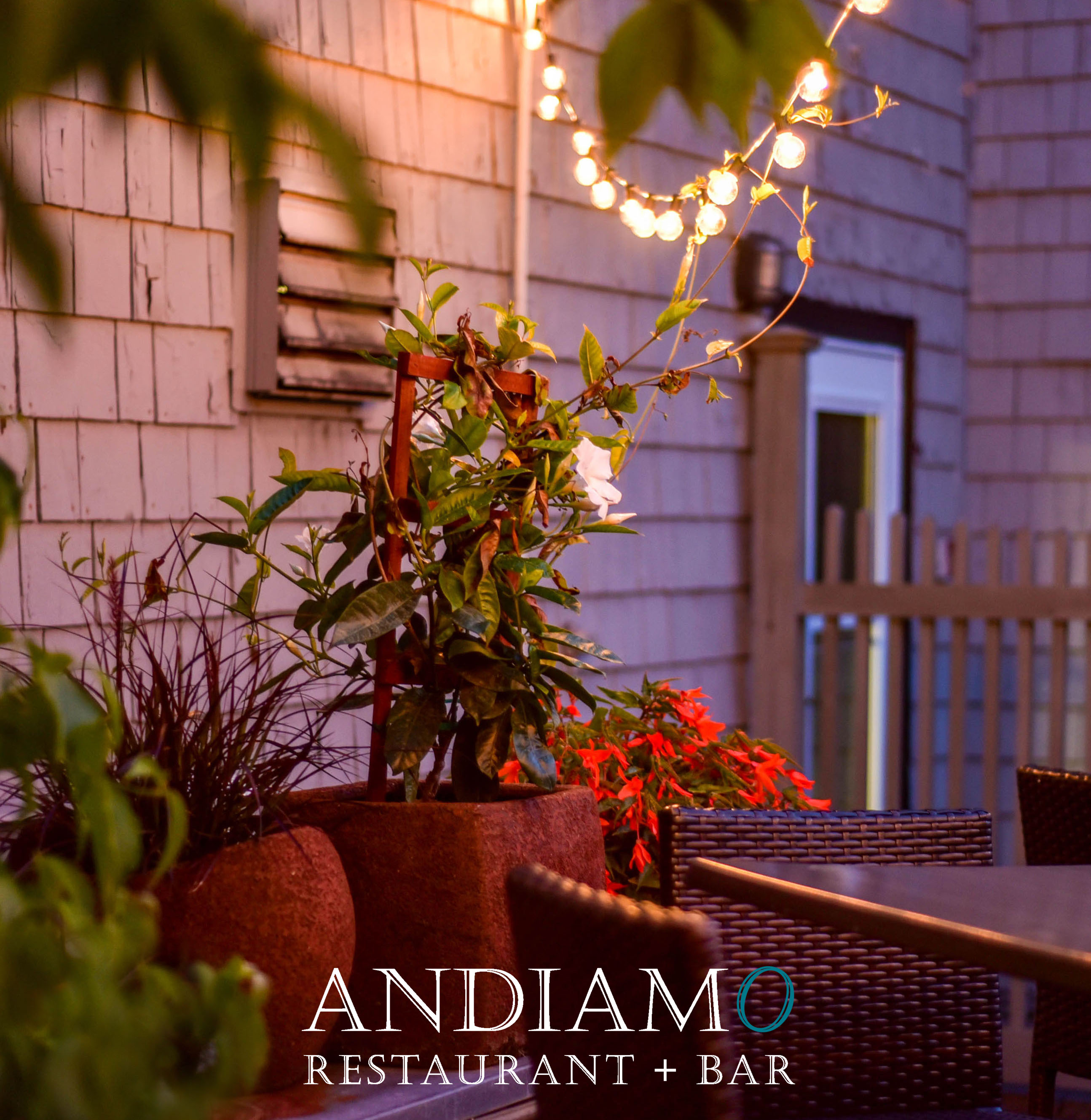 Andiamo Restaurant and Bar