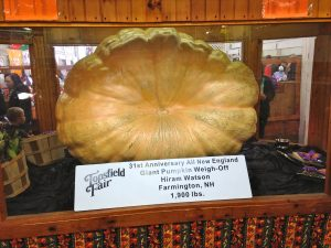 topsfield-fair-2014-giant-pumpkin-winner-in-fruits-and-vegetables-barn-by-nbcvb