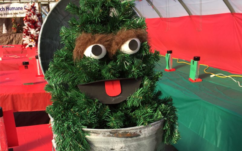 Tree Jubilee at Marini Farm — Nearly 100 Decorated Trees & Wreaths to Win!